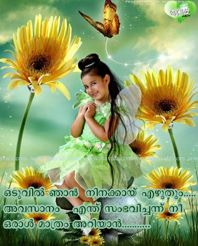 love failure quotes in malayalam facebook image share