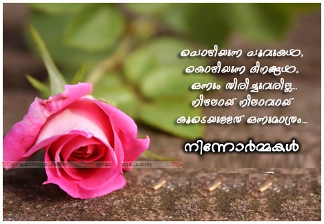 rose love picture greetings fb share facebook image share