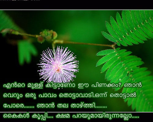 Malayalam Love Quote For Facebook Share