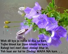 Best Hindi Shayari Pictures For Fb Share