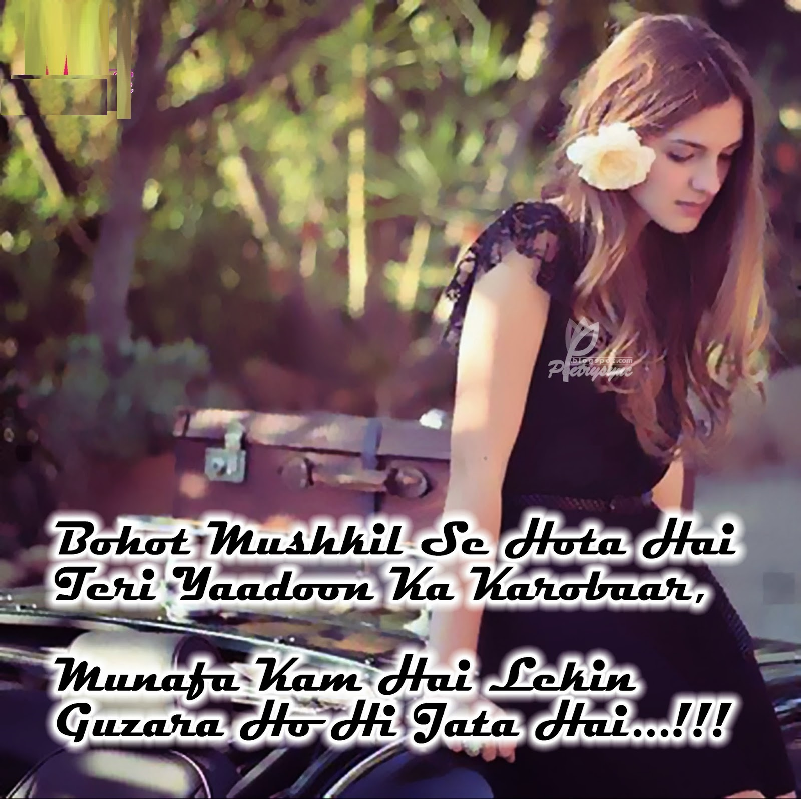 Best Love Shayari In Roman English