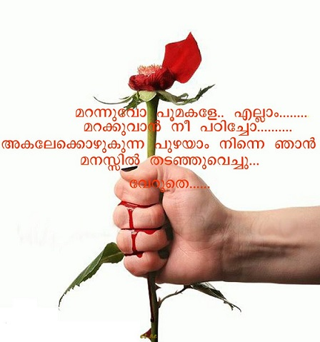 Beautiful Pictures Of Love With Malayalam Quotes malayalam fb image ...