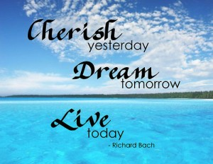 Life Quote By Richard Bach