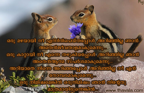 Nice Quote with Squirrel Image