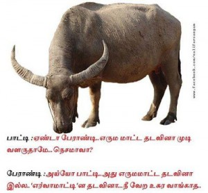 Superb Joke Tamil Funny Mems