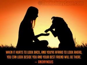 Friendship Quotes Of Anonymous
