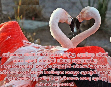 Cute Romantic Love Quote