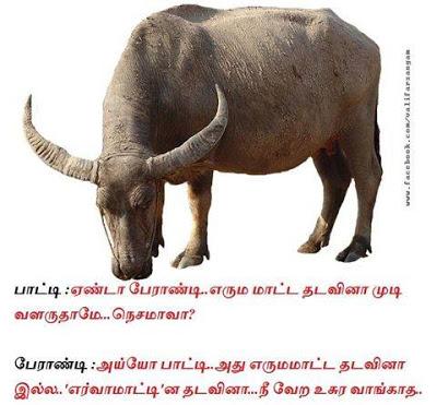 Superb Joke Tamil Funny Mems