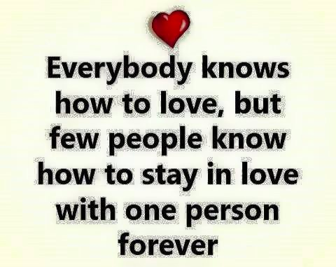 Everybody Knows How To Love